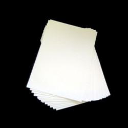 SCAT.CART.CANNA SCOPERTA ARGEN INT.BIANC O.MIS:31.5X19.5X3.5